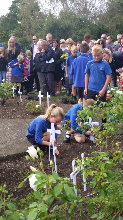 Planting the crosses in the Memorial Garden