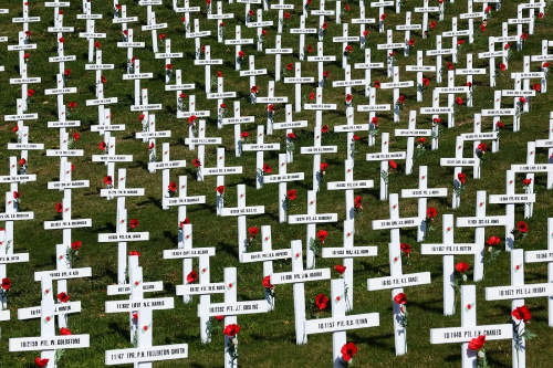2015 Field of Remembrance in Wellington Botanic Gardens