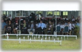 Niue Field of Remembrance commemorations