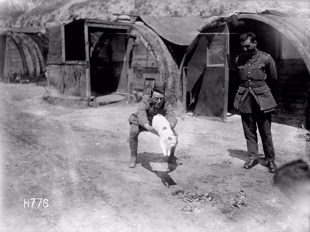 WW1 tunnellers with their cat Snowy