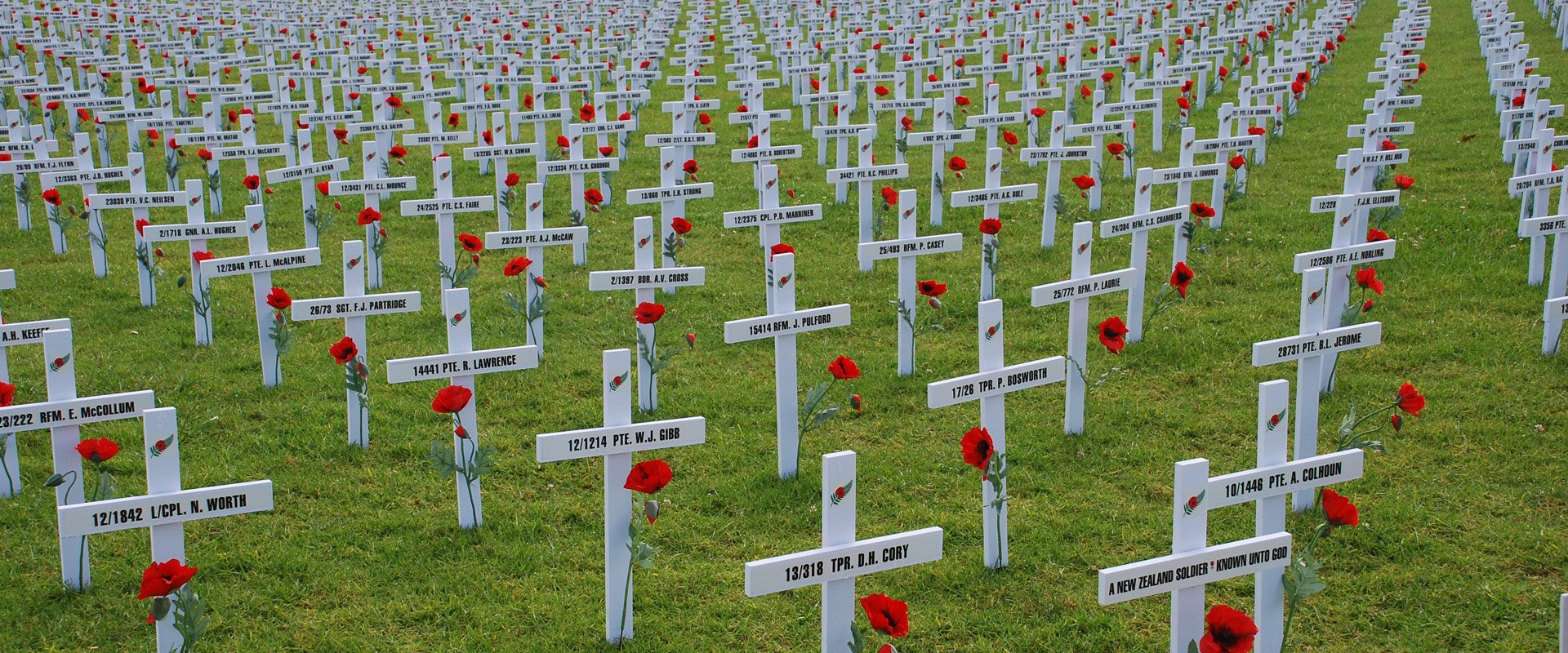 fields of remembrance world war one commemoration
