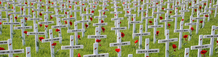 2017 Auckland Field of Remembrance
