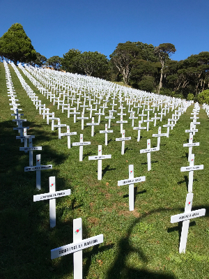 Crosses of the Salamanca Lawn in Wellington