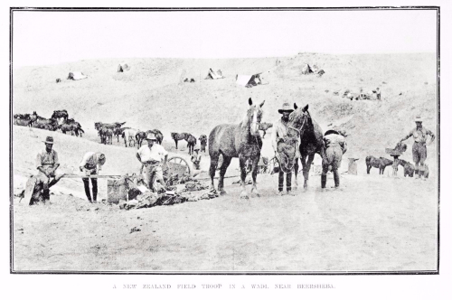 New Zealand troop with horses in the desert