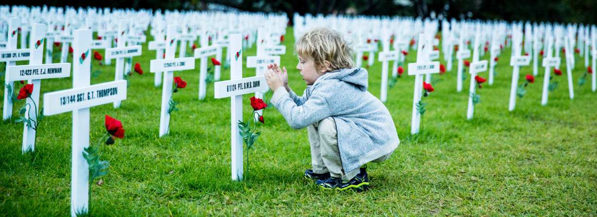 Child in a Field of Remembrance image by Carolyn Haslett